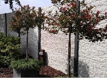 betonschutting laten plaatsen Kuiper Schuttingen